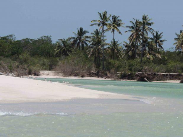 Sansibar Strandurlaub und Safari Tansania