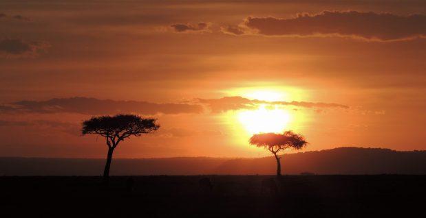 Kenia Safari – Masai Mara und neue Einreiseregeln für Kenia