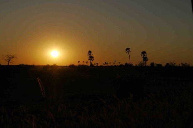 Reisen Sie in die Natur Afrikas ohne Quarantäne