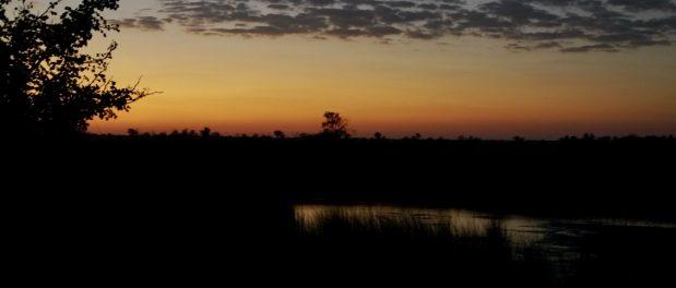 Endlich wieder Safaris im südlichen Afrika ohne Quarantäne bei Rückkehr